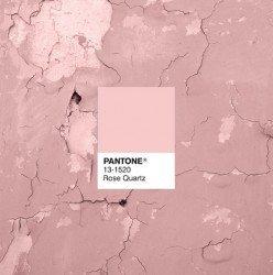 Pantone Rose Quartz