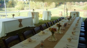 Country_wedding_table_property