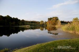 lake_longview